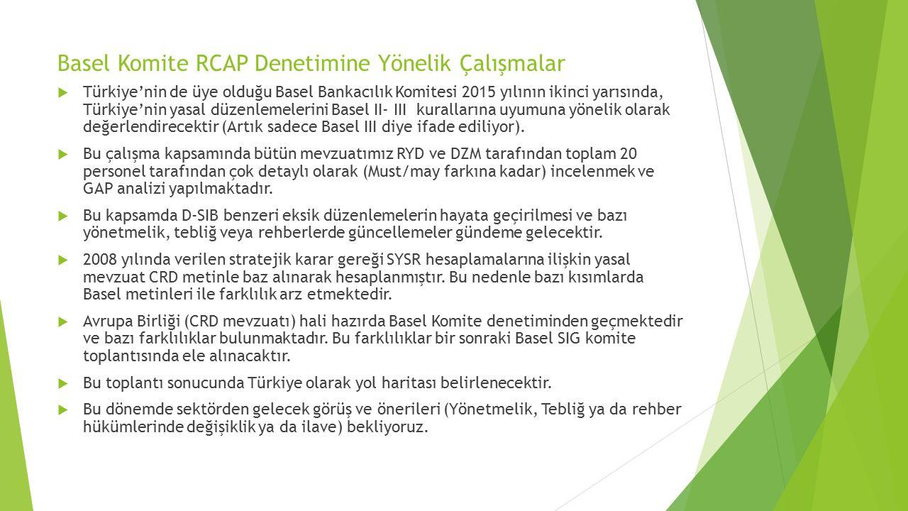 Basel Komite RCAP Denetimine Yönelik Çalışmalar