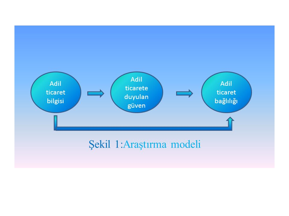 Şekil 1:Araştırma modeli