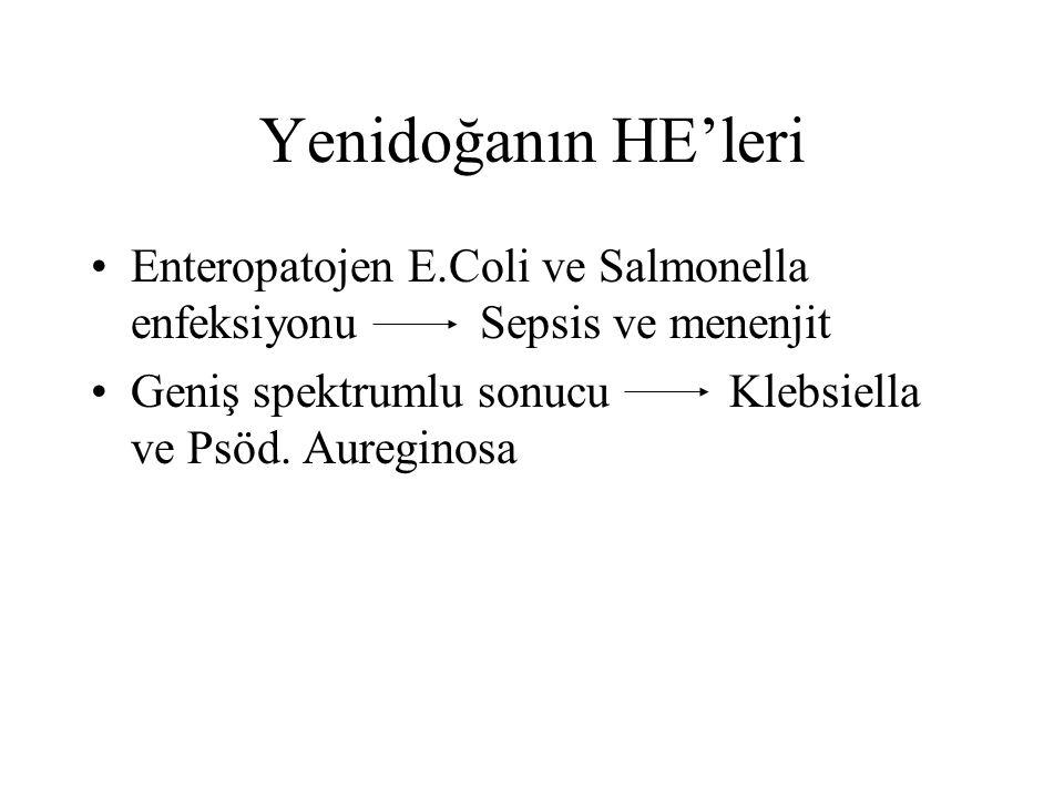 Yenidoğanın HE'leri Enteropatojen E.Coli ve Salmonella enfeksiyonu Sepsis ve menenjit.