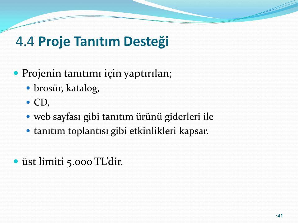 4.4 Proje Tanıtım Desteği Projenin tanıtımı için yaptırılan;