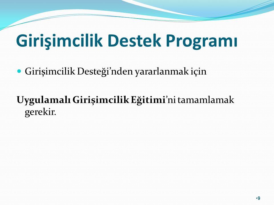 Girişimcilik Destek Programı