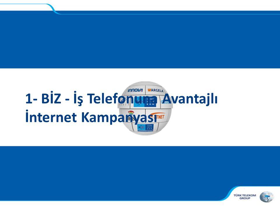 1- BİZ - İş Telefonuna Avantajlı İnternet Kampanyası
