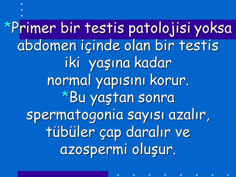 *Primer bir testis patolojisi yoksa abdomen içinde olan bir testis iki yaşına kadar normal yapısını korur.