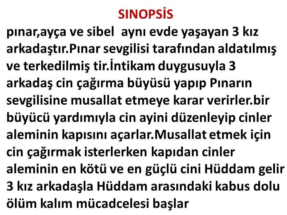 SINOPSİS