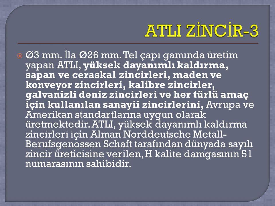 ATLI ZİNCİR-3