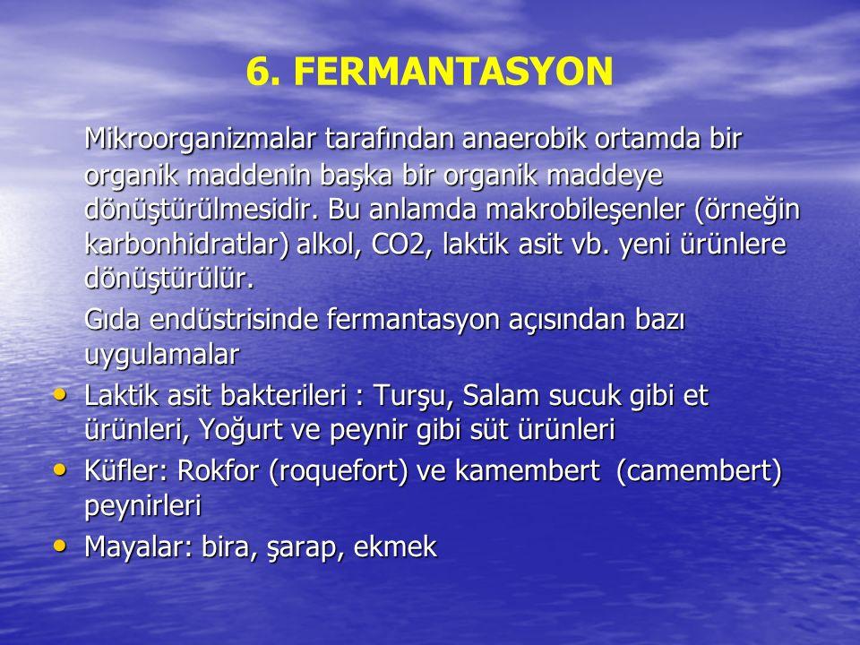 6. FERMANTASYON