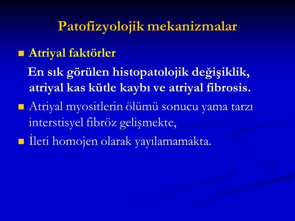 Patofizyolojik mekanizmalar