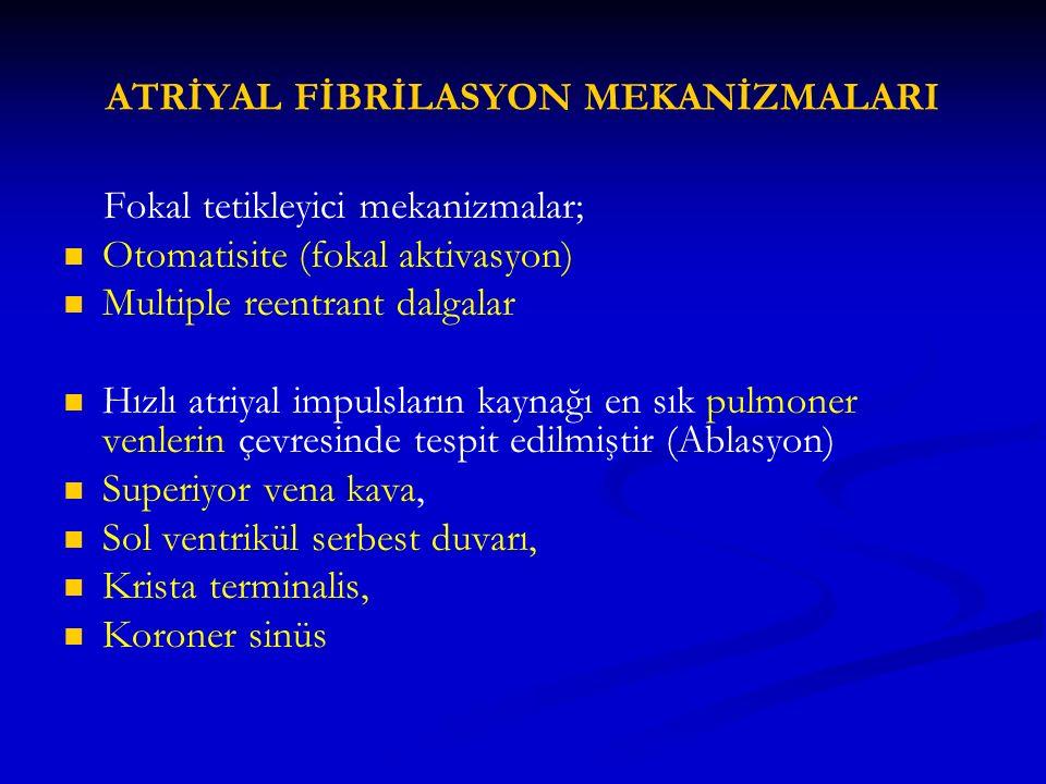 ATRİYAL FİBRİLASYON MEKANİZMALARI