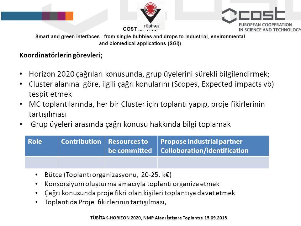 TÜBİTAK-HORIZON 2020, NMP Alanı İstişare Toplantısı 15.09.2015