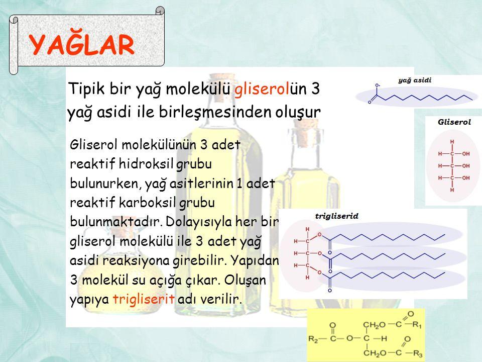 YAĞLAR Tipik bir yağ molekülü gliserolün 3 yağ asidi ile birleşmesinden oluşur.