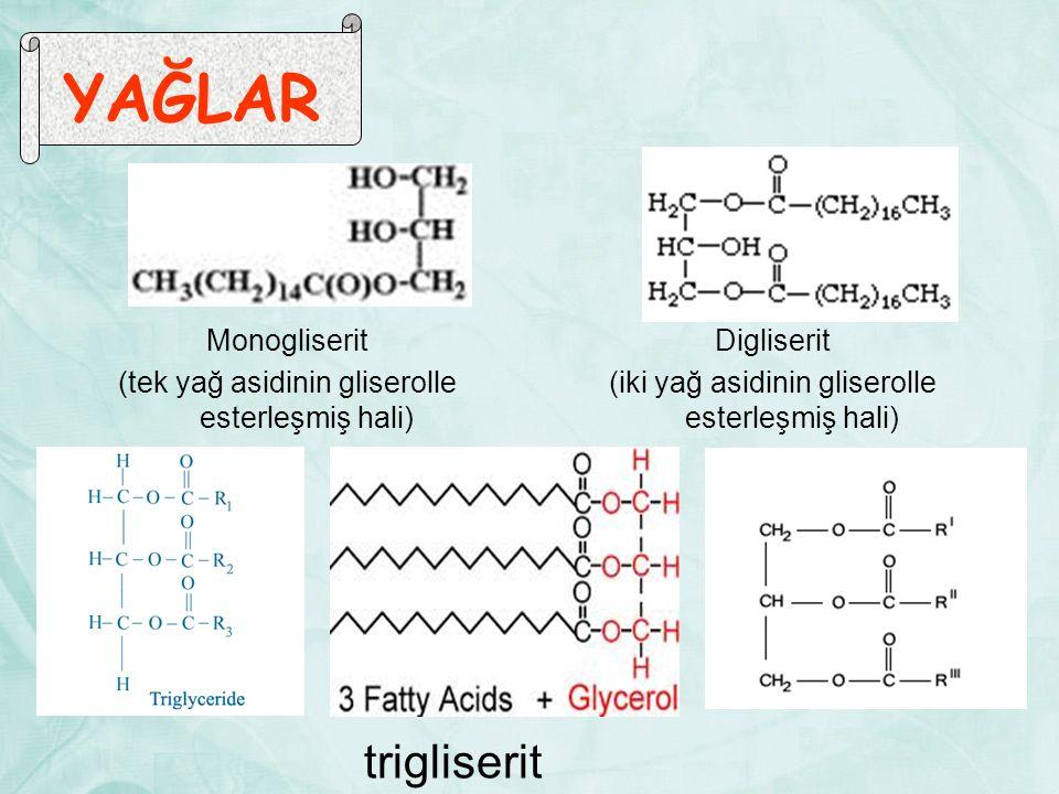YAĞLAR Monogliserit (tek yağ asidinin gliserolle esterleşmiş hali) Digliserit (iki yağ asidinin gliserolle esterleşmiş hali)
