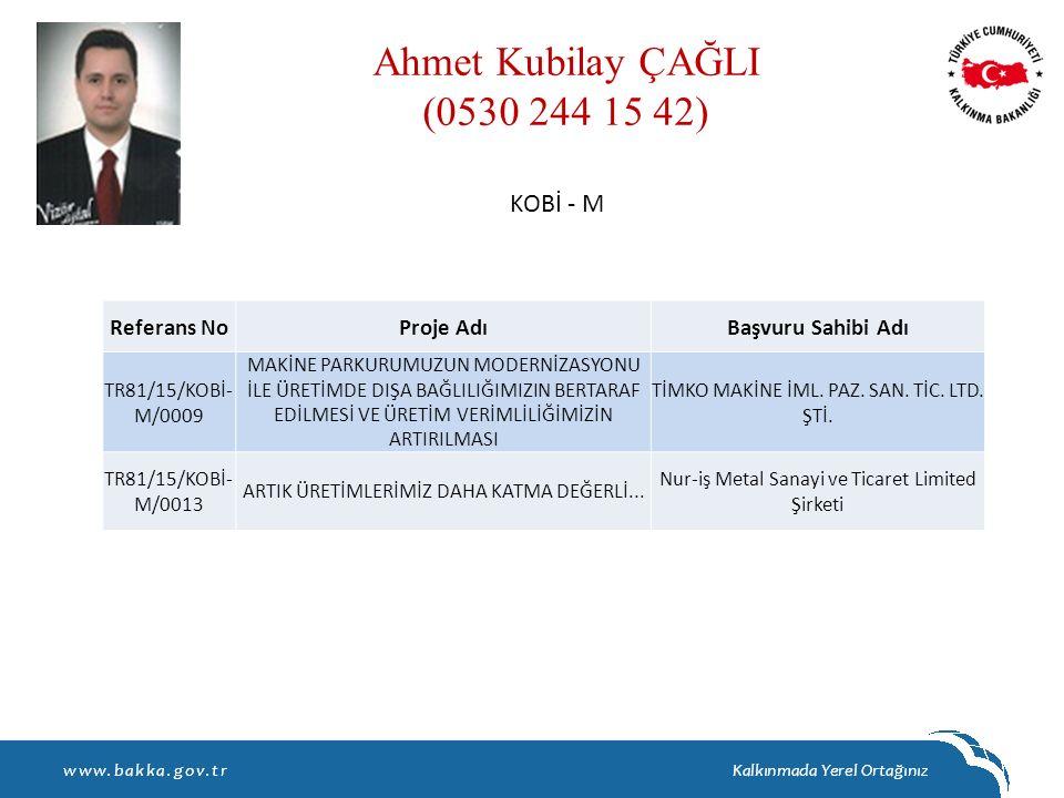 Ahmet Kubilay ÇAĞLI (0530 244 15 42) KOBİ - M Referans No Proje Adı