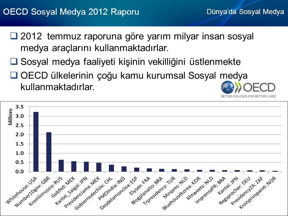 OECD Sosyal Medya 2012 Raporu