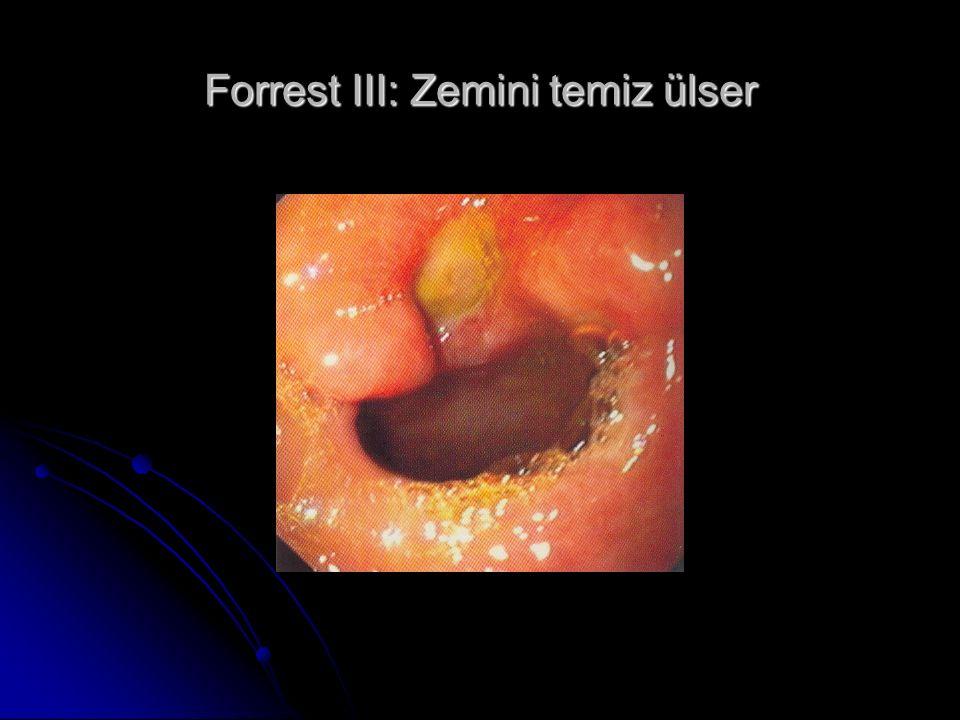 Forrest III: Zemini temiz ülser