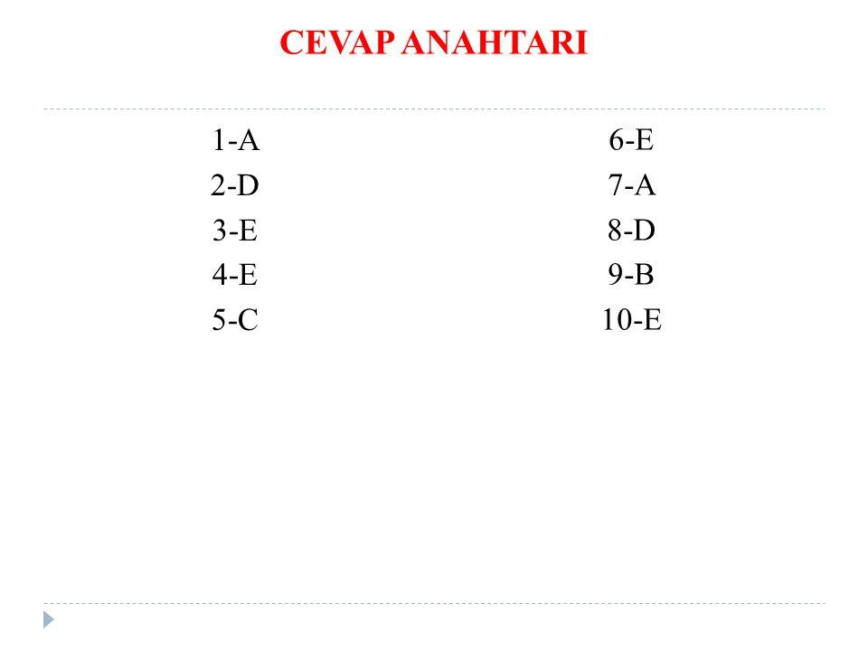 CEVAP ANAHTARI 1-A 2-D 3-E 4-E 5-C 6-E 7-A 8-D 9-B 10-E