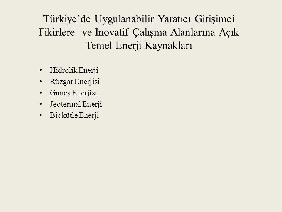 Türkiye'de Uygulanabilir Yaratıcı Girişimci Fikirlere ve İnovatif Çalışma Alanlarına Açık Temel Enerji Kaynakları
