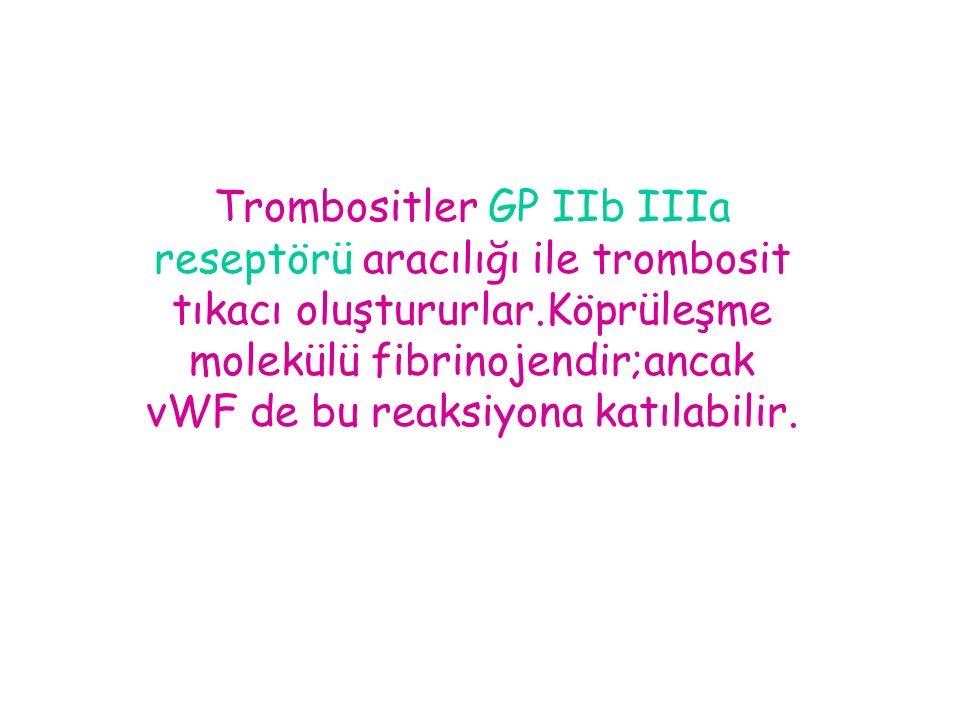 Trombositler GP IIb IIIa reseptörü aracılığı ile trombosit tıkacı oluştururlar.Köprüleşme molekülü fibrinojendir;ancak vWF de bu reaksiyona katılabilir.