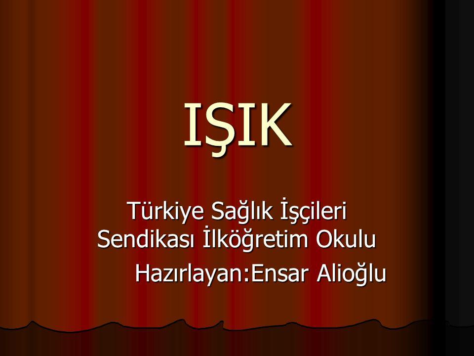 IŞIK Türkiye Sağlık İşçileri Sendikası İlköğretim Okulu
