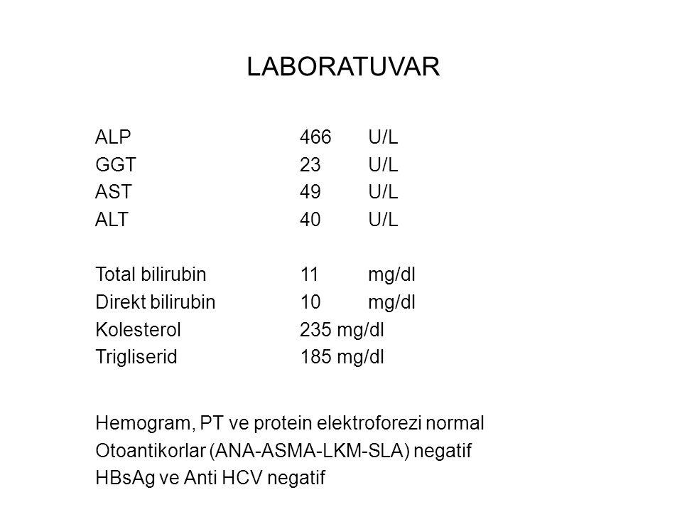 LABORATUVAR ALP 466 U/L GGT 23 U/L AST 49 U/L ALT 40 U/L