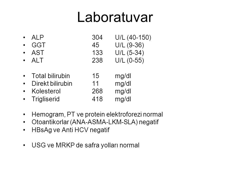 Laboratuvar ALP 304 U/L (40-150) GGT 45 U/L (9-36) AST 133 U/L (5-34)