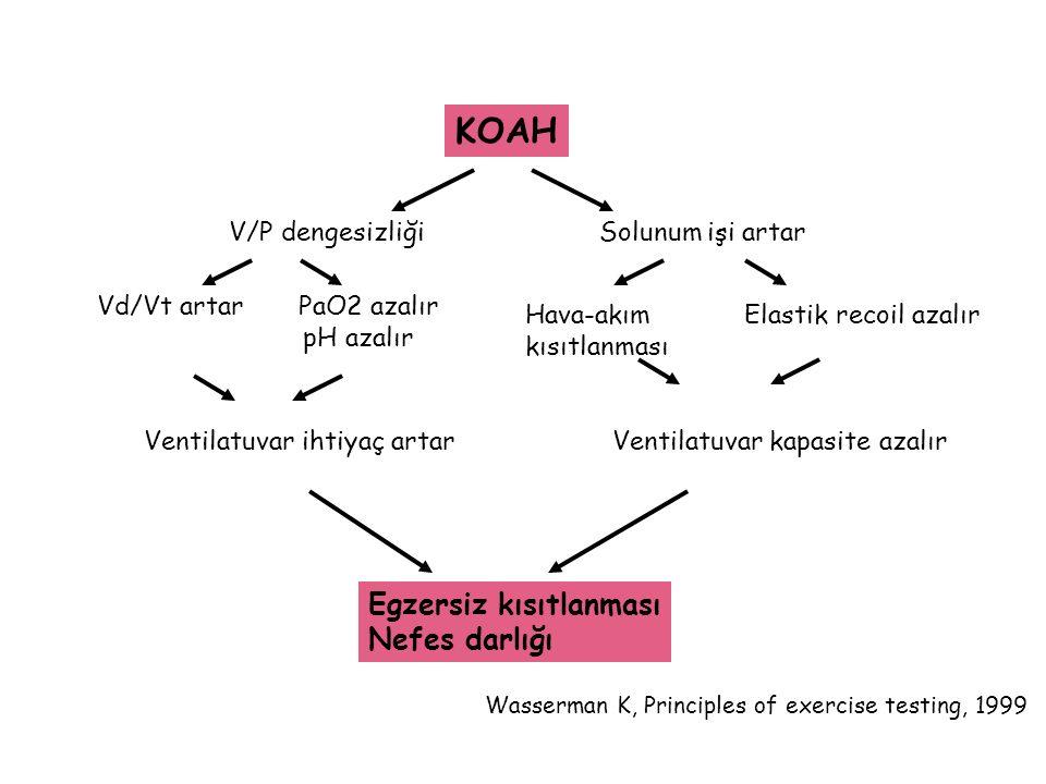 KOAH Egzersiz kısıtlanması Nefes darlığı V/P dengesizliği