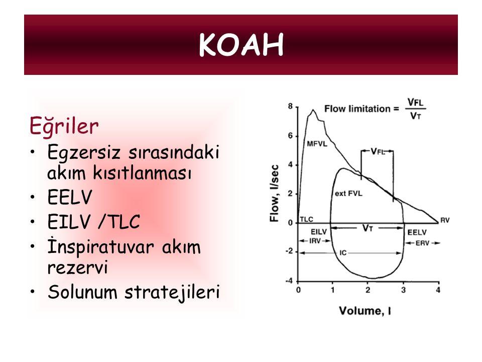 KOAH Eğriler Egzersiz sırasındaki akım kısıtlanması EELV EILV /TLC