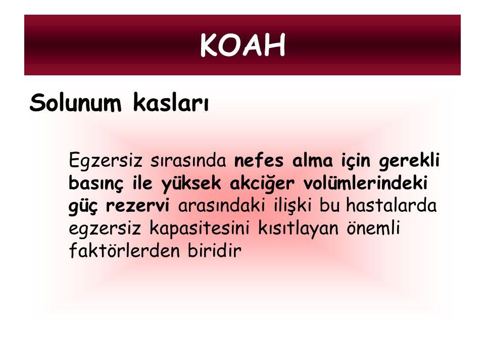 KOAH Solunum kasları.