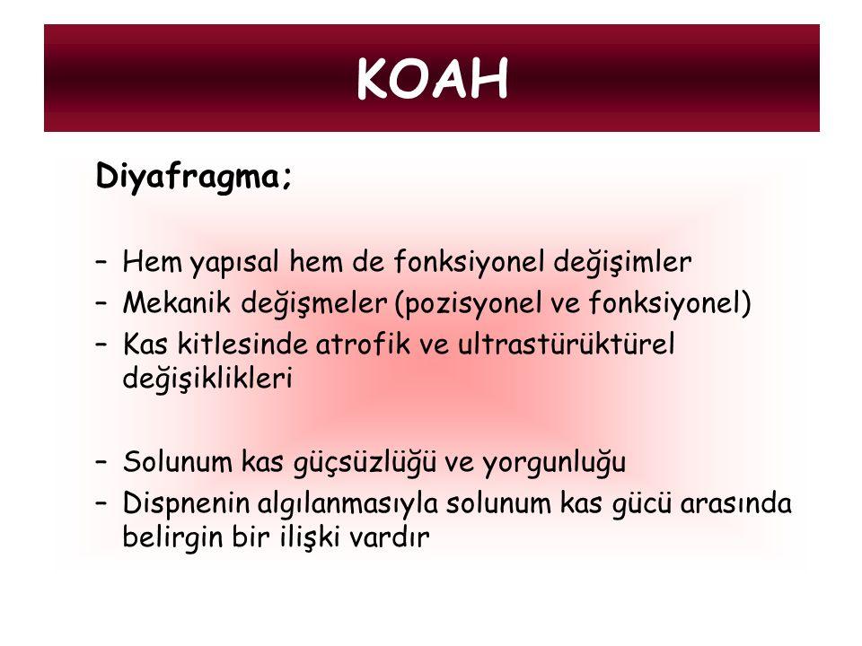 KOAH Diyafragma; Hem yapısal hem de fonksiyonel değişimler