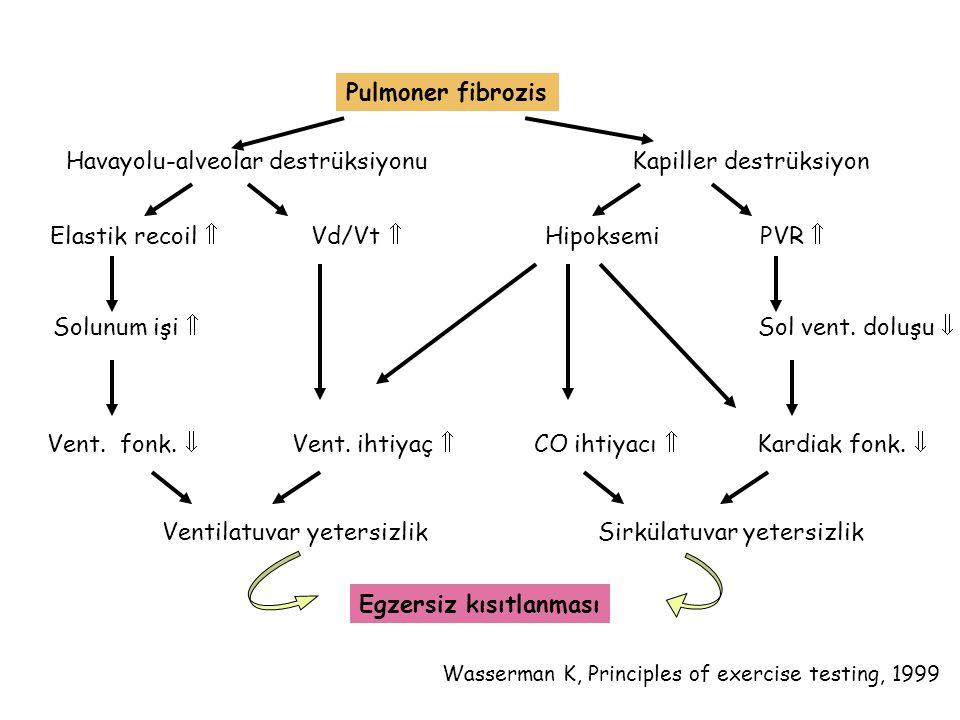 Havayolu-alveolar destrüksiyonu Kapiller destrüksiyon