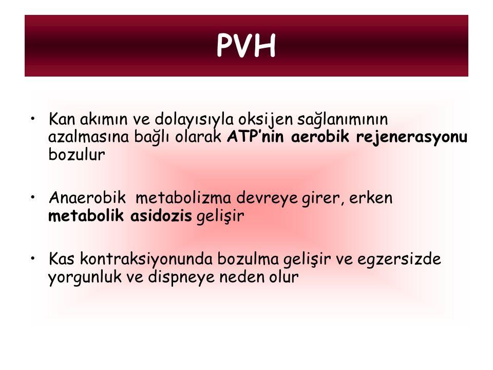 PVH Kan akımın ve dolayısıyla oksijen sağlanımının azalmasına bağlı olarak ATP'nin aerobik rejenerasyonu bozulur.