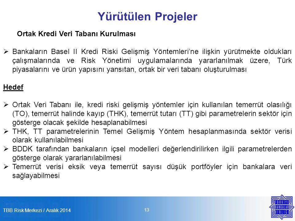Yürütülen Projeler Ortak Kredi Veri Tabanı Kurulması