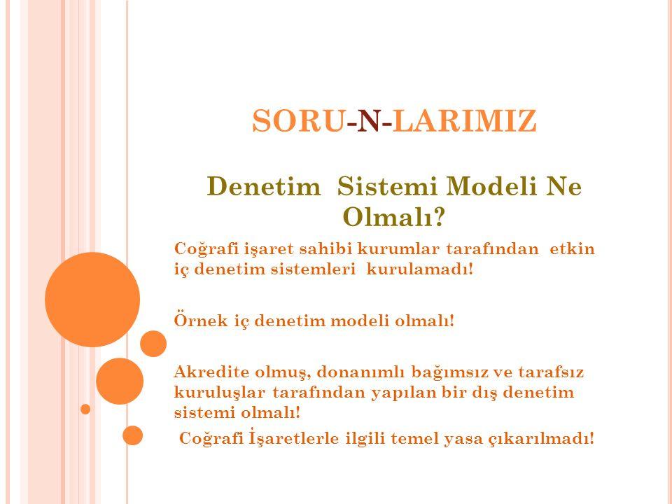 Denetim Sistemi Modeli Ne Olmalı