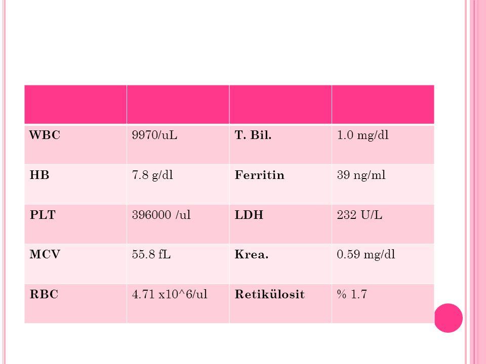 WBC 9970/uL. T. Bil. 1.0 mg/dl. HB. 7.8 g/dl. Ferritin. 39 ng/ml. PLT. 396000 /ul. LDH. 232 U/L.