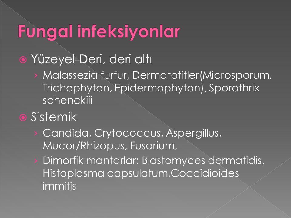 Fungal infeksiyonlar Yüzeyel-Deri, deri altı Sistemik
