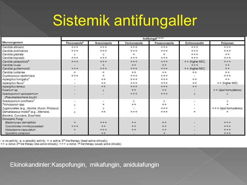 Sistemik antifungaller