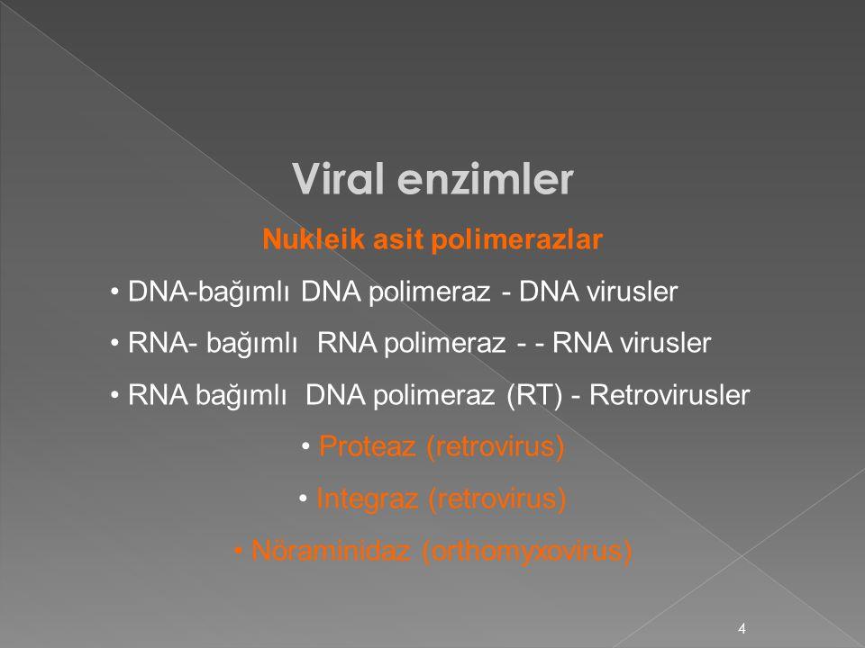 Nukleik asit polimerazlar