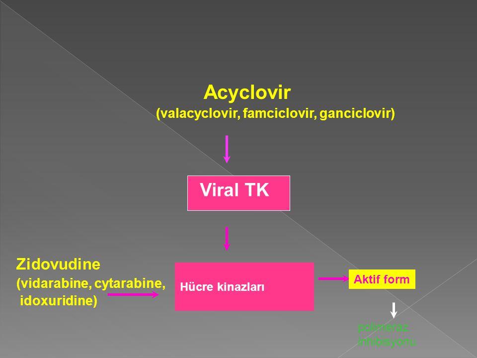 Acyclovir Zidovudine (valacyclovir, famciclovir, ganciclovir)