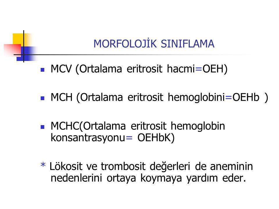 MORFOLOJİK SINIFLAMA MCV (Ortalama eritrosit hacmi=OEH) MCH (Ortalama eritrosit hemoglobini=OEHb )