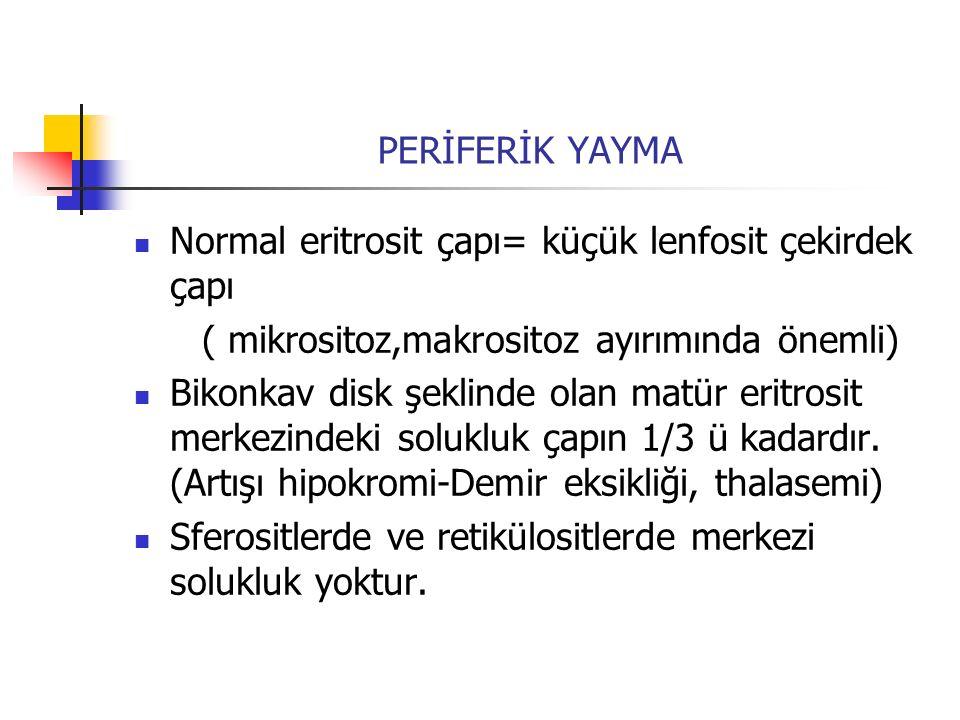 ( mikrositoz,makrositoz ayırımında önemli)