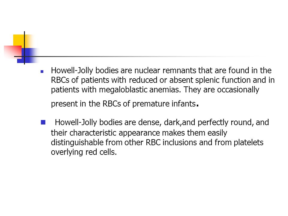Howell-Jolly bodies are nuclear remnants that are found in the RBCs of patients with reduced or absent splenic function and in patients with megaloblastic anemias. They are occasionally present in the RBCs of premature infants.