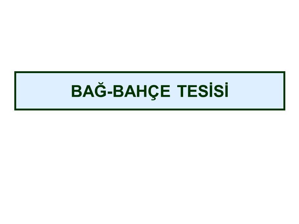 BAĞ-BAHÇE TESİSİ
