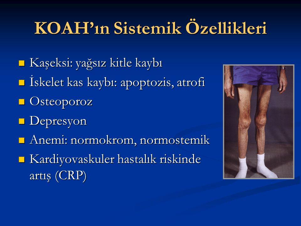 KOAH'ın Sistemik Özellikleri
