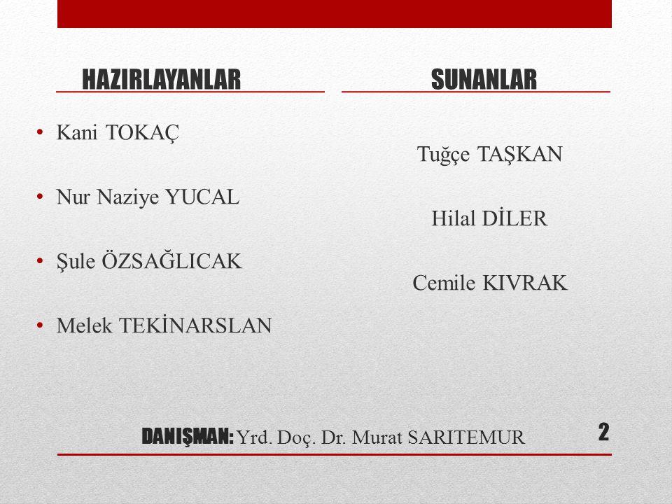 DANIŞMAN: Yrd. Doç. Dr. Murat SARITEMUR