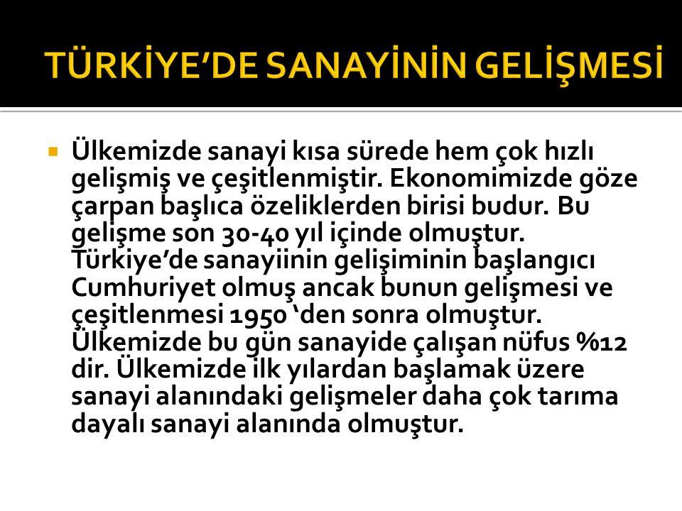 TÜRKİYE'DE SANAYİNİN GELİŞMESİ