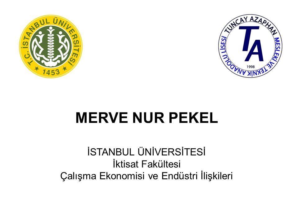 MERVE NUR PEKEL İSTANBUL ÜNİVERSİTESİ İktisat Fakültesi
