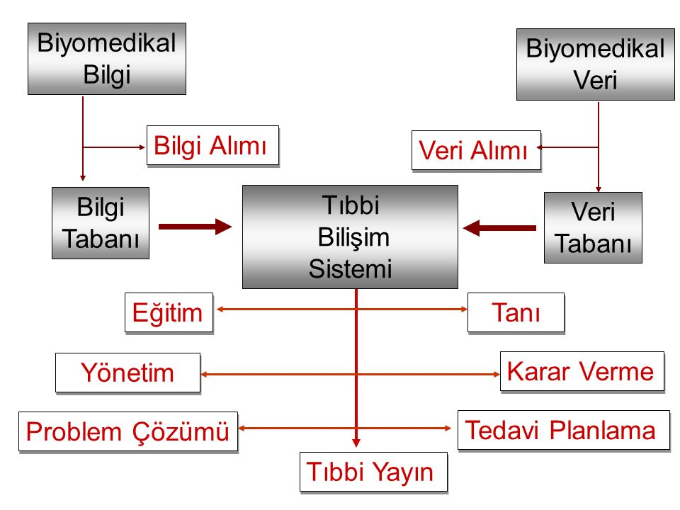 Biyomedikal Bilgi. Biyomedikal. Veri. Bilgi Alımı. Veri Alımı. Bilgi. Tabanı. Tıbbi. Bilişim.