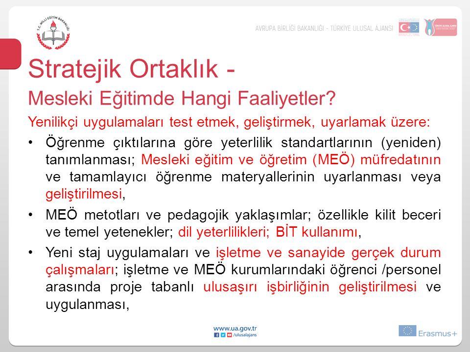 Stratejik Ortaklık - Mesleki Eğitimde Hangi Faaliyetler