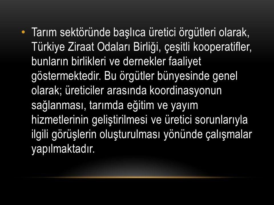 Tarım sektöründe başlıca üretici örgütleri olarak, Türkiye Ziraat Odaları Birliği, çeşitli kooperatifler, bunların birlikleri ve dernekler faaliyet göstermektedir.