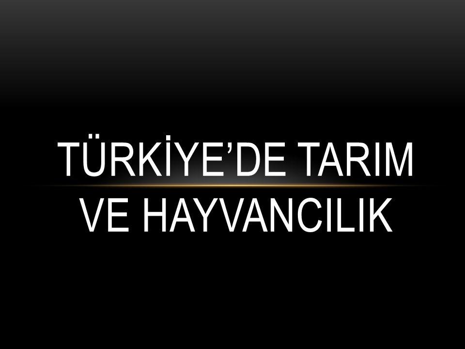 TÜRKİYE'DE TARIM VE HAYVANCILIK