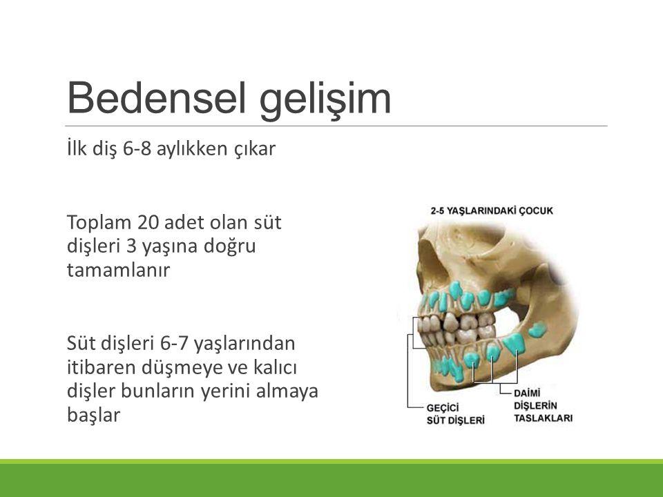Bedensel gelişim İlk diş 6-8 aylıkken çıkar